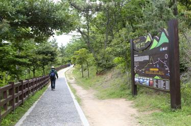 땅끝천년숲길