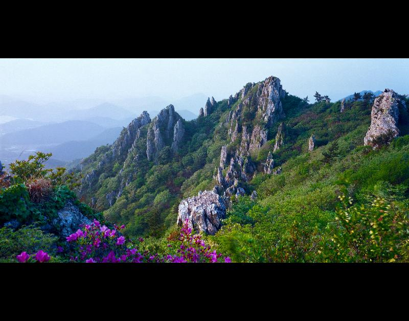 달마산의봄(정홍선)동상.jpg
