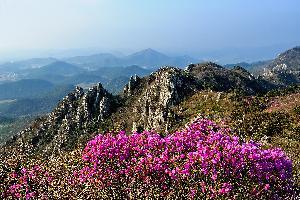 27-고상훈-달마산의 봄.jpg