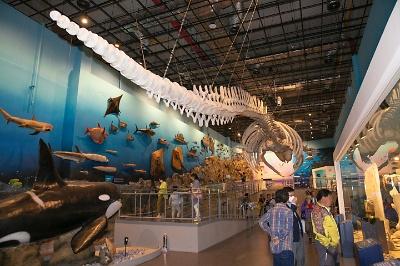 땅끝해양자연사박물관 개관식